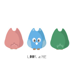 cute colorful cartoon owls with front and back vector image