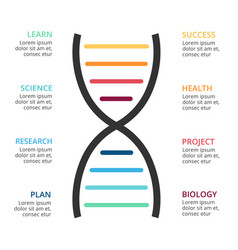 Dna science infographic medical diagram vector