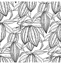 Graphic cocoa fruits pattern vector