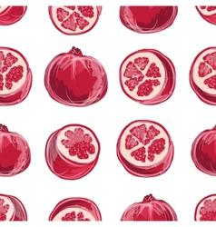 Pomegranate seamless pattern for your design vector image