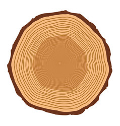 Tree trunk rings design isolated on white vector