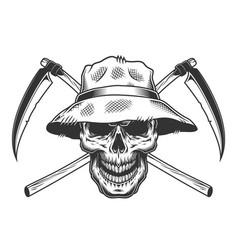 vintage skull in panama hat vector image