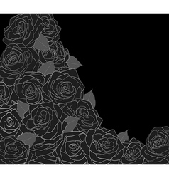 Outline of roses on a black background vector image