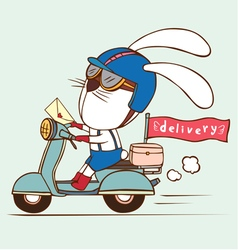 delivery rabbit vector image
