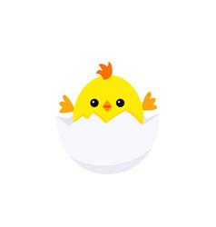 funny chicken bainside egg vector image
