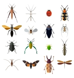 Insect icons set isolated on white vector