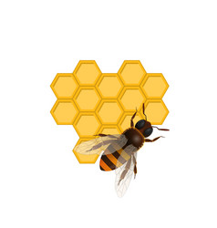 Organic farming symbol with honeybee vector