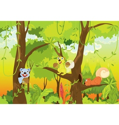 Squirrel forest vector image
