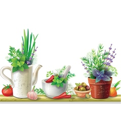 Still life with garden herbs vector