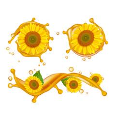 sunflower oil realistic sunflowers oil splashes vector image