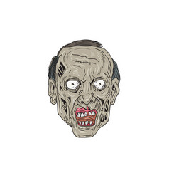 Zombie head front drawing vector