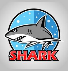 cartoon shark mascot with blue circle vector image