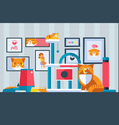 cat pictures on wall vector image