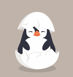 cute penguin hatched in egg vector image