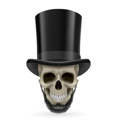 Human skull with beard and hat on vector