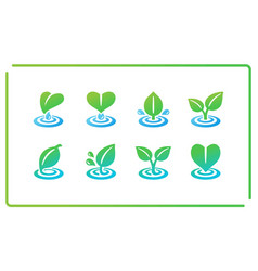 Leaf and ripple icon set vector