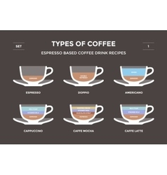 Set types of coffee Info-graphic vector