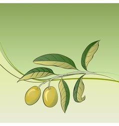 Two olives on branch vector image vector image
