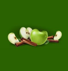 Cinnamon and green apples vector