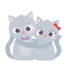 happy valentines day cute couple cats romantic vector image