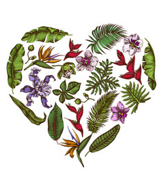 Heart floral design with colored monstera banana vector