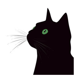 black cat with green eyes on white background vector image