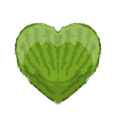 Watermelon heart shape for your design vector image vector image