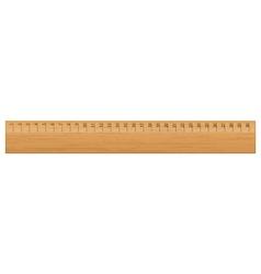 wooden ruler vector image vector image