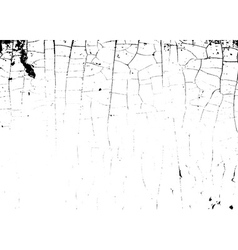 grunge craquelure Cracked texture white and black vector image vector image