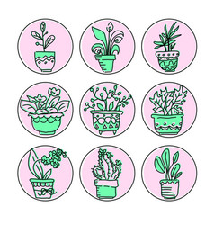 Bright icon set of housplants in pots vector