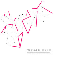 color connect lines and molecules background vector image