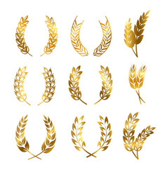 golden rye wheat ears wreaths elements vector image