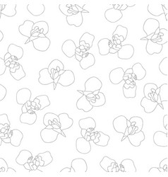 iris flower outline on white background vector image