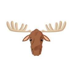 Moose extant species antler elk animal wild image vector