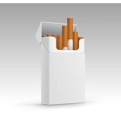 Opened Pack of Cigarettes Isolated on Background vector