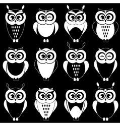 Set of cute black and white owls vector