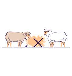 Sheeps eating hay flat livestock farming animal vector