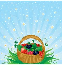 Summer harvest vector image
