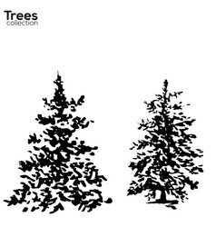 trees collection ink fir silhouettes vector image