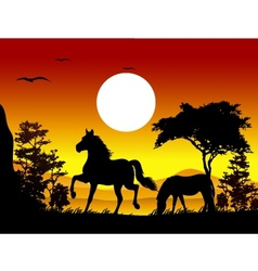 horse silhouettes with landscape background vector image