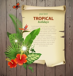 tropical banner vector image