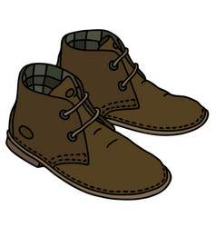 brown suede shoes vector image