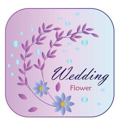 Elegant floral elements decoration vector