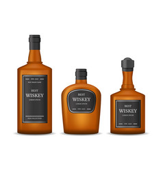 realistic detailed 3d whiskey bottles set vector image