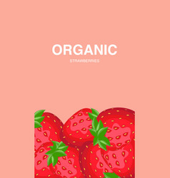 strawberries with leaves and seeds flyer vector image