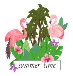 summer time background banner vector image
