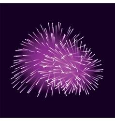 Violet fireworks on dark background vector image