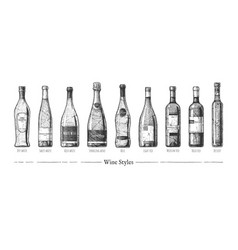 Wine styles vector