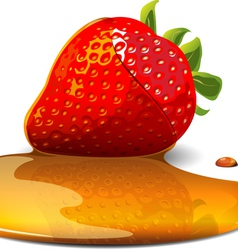 strawberry under caramel vector image