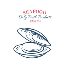 hand drawn mussel icon vector image vector image